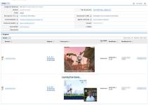 Vista previa de vídeos en subpaneles