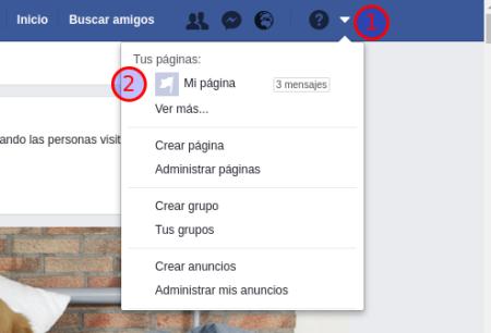 Método de obtención del identificador de una página de Facebook - Paso 1